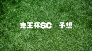 京王杯SC