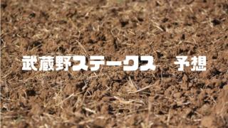 武蔵野ステークス